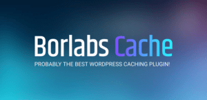 Borlabs Cache Header